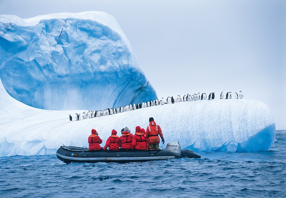 Guests exploring Antarctica and penguins
